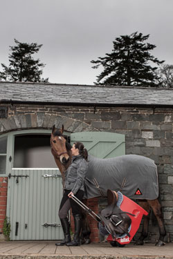 Rolltack in action at the stable